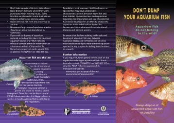 Don't dump your aquarium fish - PIRSA - SA.Gov.au