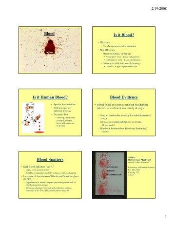 Fsb 09 Blood Spatter Worksheets Pdf File 2632 Kb