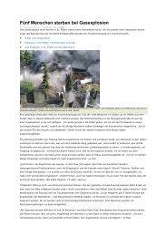 Fünf Menschen starben bei Gasexplosion - Schornsteinfeger ...