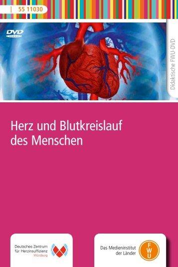 Herz und Blutkreislauf des Menschen - FWU