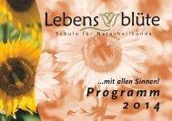Download Programmheft 2014 - Ausbildung für und zum ...