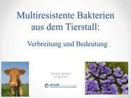 Multiresistente Bakterien aus dem Tierstall – Verbreitung und ...