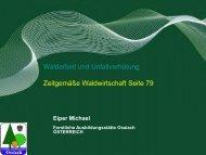 Waldarbeit und Unfallverhütung.pdf - BFW