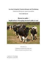 Horns in cattle - KOBRA - Universität Kassel