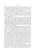 View - NAOSITE - Page 4