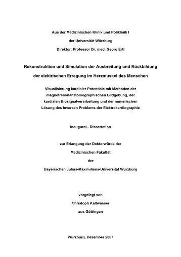 Rekonstruktion und Simulation der Ausbreitung ... - OPUS Würzburg