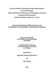 PDF 5.702kB - TOBIAS-lib - Universität Tübingen