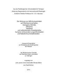 PDF 3.373kB - TOBIAS-lib