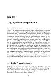 Kapitel 4 Tagging-Phantomexperimente