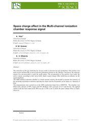 Space charge effect in the Multi-channel ionization chamber ... - SISSA
