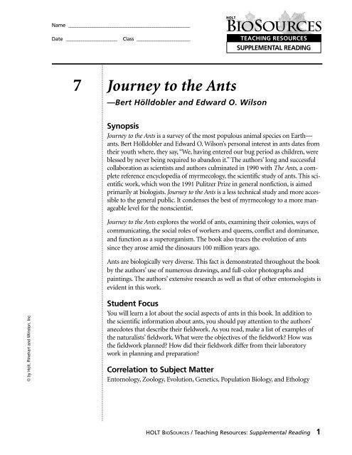 Journey to the Ants Book Report Worksheet pdf