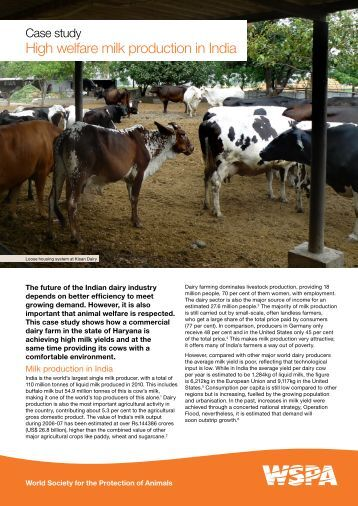 High welfare milk production in India - WSPA