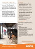 High welfare milk production in India - WSPA - Page 4