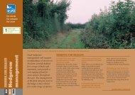 Hedgerow management advisory sheet (England) - RSPB