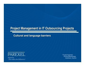 PM in IT Outsourcing Projects