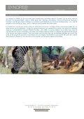 Afrique du Sud et Zambie - Synopsism - Page 3