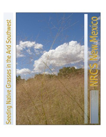 Seeding Native Grasses in the Arid Southwest - Plant Materials ...