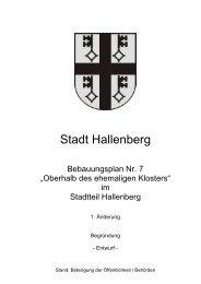 Entwurf der Begründung - Hallenberg