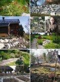 Naturnahe Gaerten:TH_2-08 - Traumhaus - Seite 4