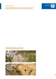 Hohenbuschei