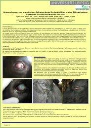 Untersuchungen zum enzootischen Auftreten akuter