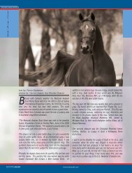 lessed with fantastic weather the National Arabian Stud ... - tutto arabi