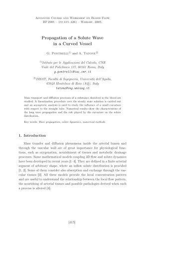 (pdf file, 179 Kb)). - Istituto per le Applicazioni del Calcolo