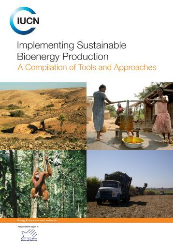 Implementing Sustainable Bioenergy Production: a ... - IUCN