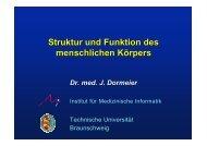 Vorl. I (1,24 MB) - Technische Universität Braunschweig