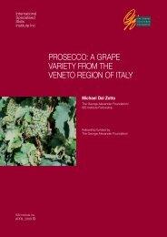 prosecco: a grape variety from the veneto region of italy