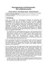Vorsorgeprinzip und Klimawandel: Der Leitplankenansatz