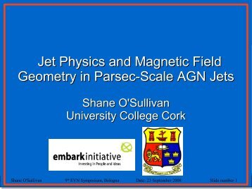 Jet Physics and Magnetic Field Geometry in Parsec-Scale AGN Jets