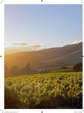 Südafrika - Schweizerische Weinzeitung