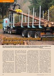 Grenzüberschreitende Holzlogistik - KRANMAGAZIN