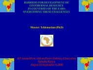 OVERVIEW OF GEOTHERMAL EXPLORATION AND ... - African Union