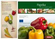 Paprika - AMA-Marketing