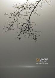 Untitled - Probus Sigma