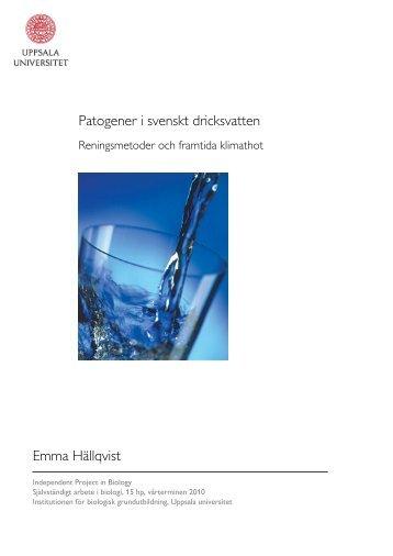 Patogener i svenskt dricksvatten Emma Hällqvist - Svenskt Vatten