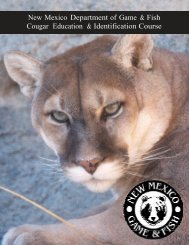 Cougar education booklet - New Mexico Game and Fish