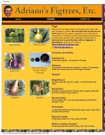 fig varieties - Figs 4 Fun