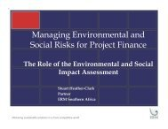 Managing Environmental and Social Risks for Project Finance