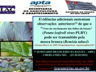 GEMINIVIRUS - Associação Brasileira da Batata (ABBA)