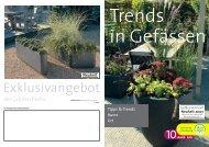 Trends in Gefässen - grneprofis-beb.ch