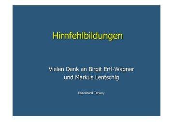 Prof. Dr. med. Burckhard Terwey Hirnfehlbildungen und mehr!