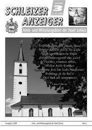 Ausgabe 3/2008 – Amts- und Mitteilungsblatt der Stadt Schleiz ...