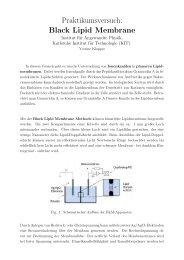 Praktikumsversuch: Black Lipid Membrane - Fakultät für Physik - KIT