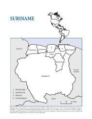 Suriname - Health in the Americas 2007 - Volume II - PAHO/WHO