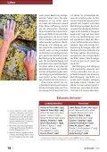 Glaube, Werke und Heilsgewissheit - Michael Schneider - Seite 3