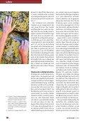 Glaube, Werke und Heilsgewissheit - Michael Schneider - Seite 5