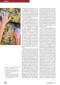 Glaube, Werke und Heilsgewissheit - Michael Schneider - Seite 7